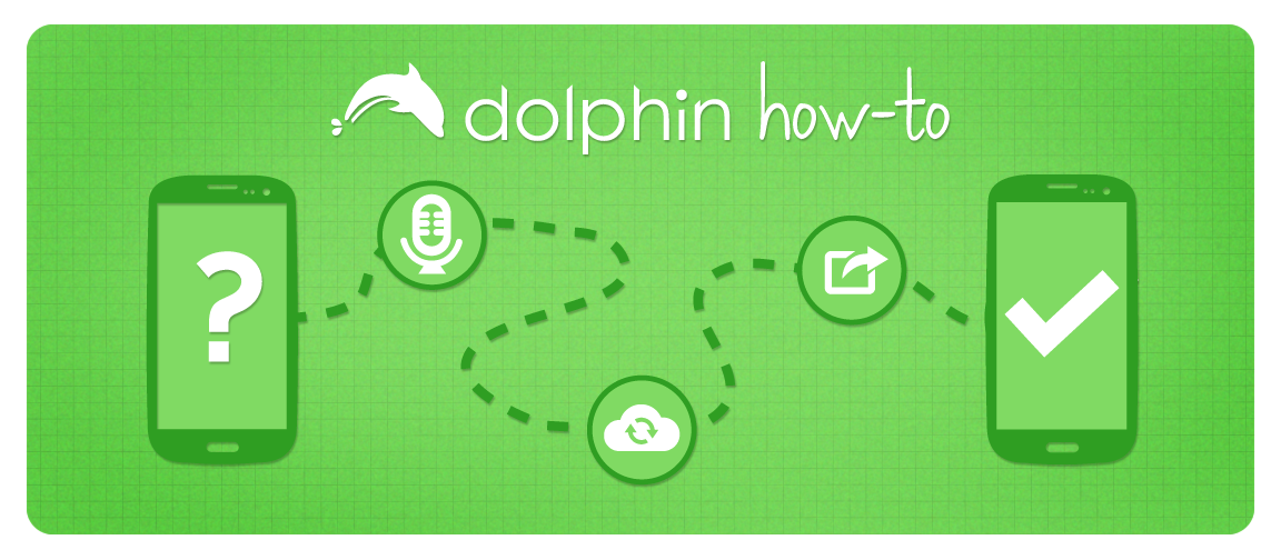 Banner_Dolphin How-To_v2